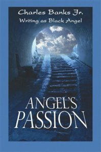 Angel's Passion Published by PublishAmerica, LLLP (October, 2008)